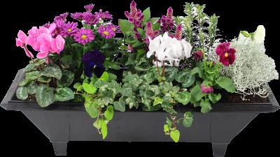la fontaine fleurie jardini re de fleurs vari es pour cimeti re. Black Bedroom Furniture Sets. Home Design Ideas