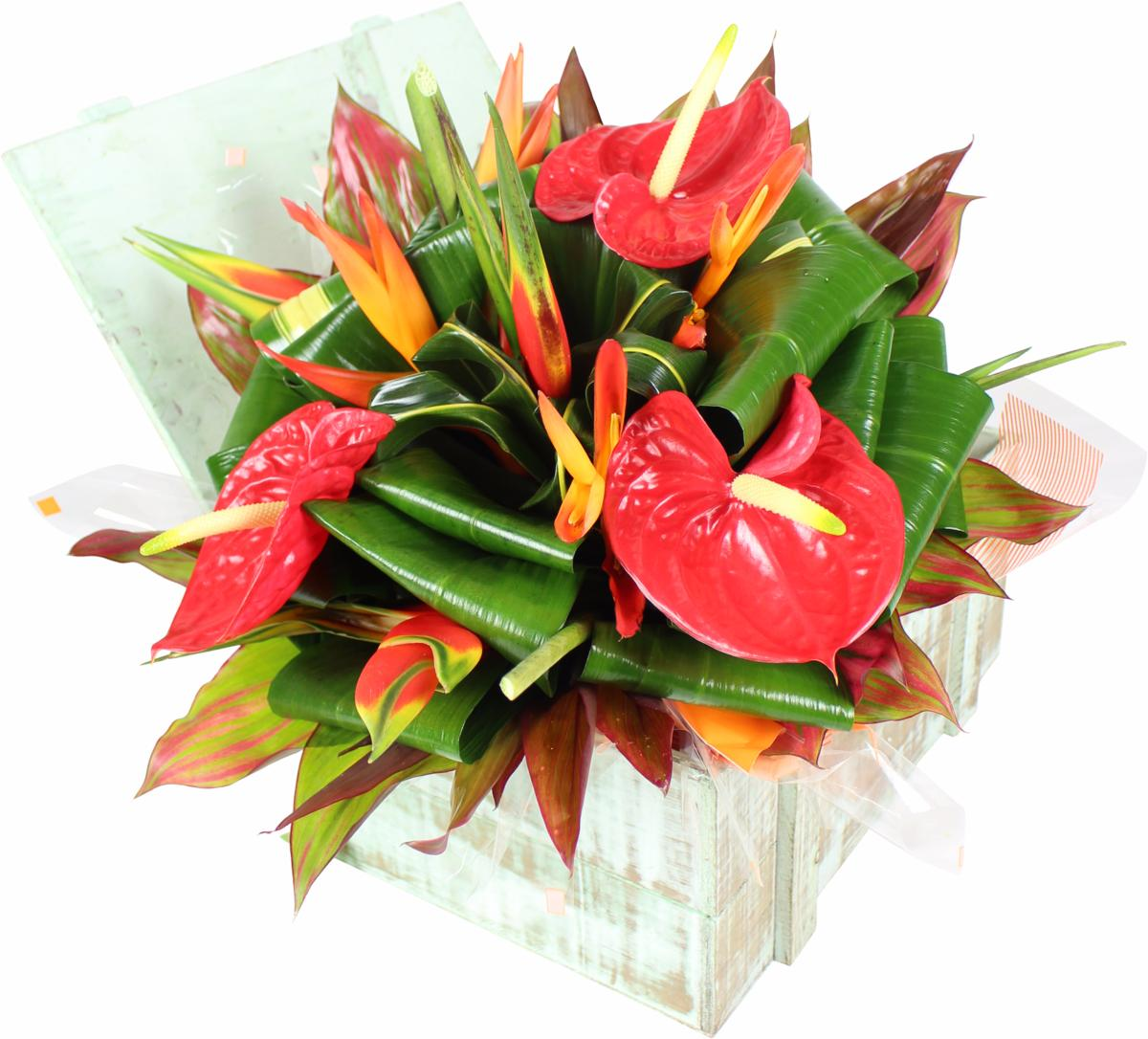 La fontaine fleurie offrir bouquet fleurs exotique bequia for Bouquet de fleurs guadeloupe
